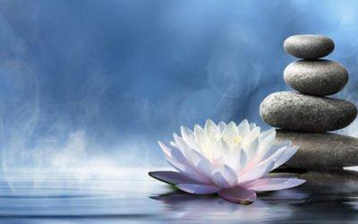 Venez soutenir votre famille, parents et amis grâce au pouvoir du yoga