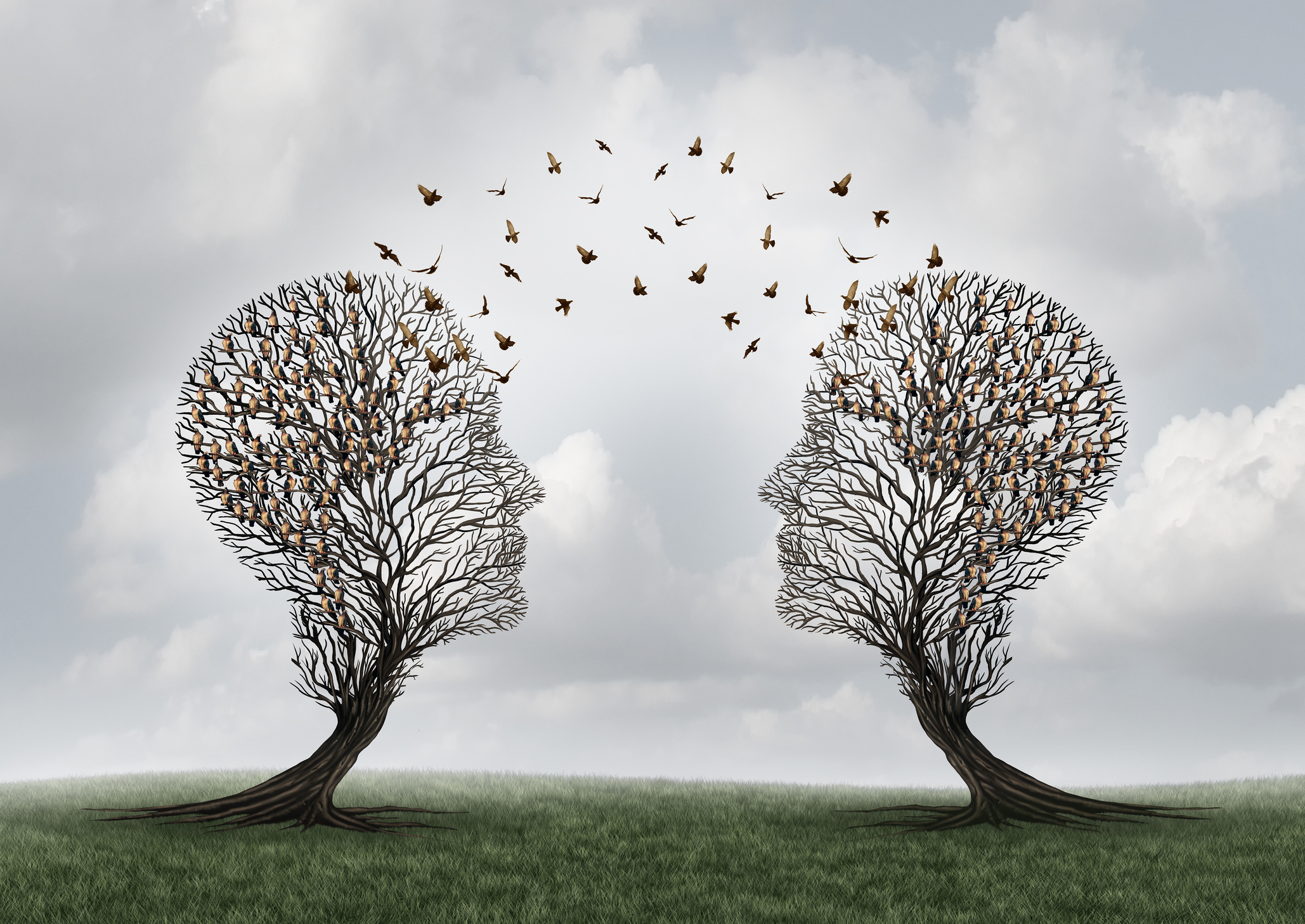 Communicating a message between two head shaped trees with birds perched and flying to each other as a metaphor for personal relationship